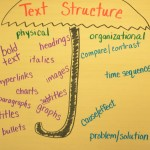 Text Structure Anchor Chart (standard 5)
