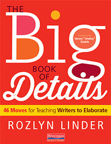 The Big Book of Details by Rozlyn Linder